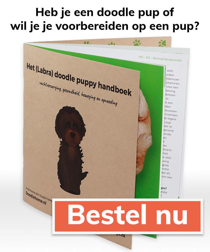 Labradoodle puppy handboek